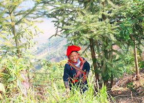 Red Dzao Woman, Thanh Kim Valley, Sapa, Vietnam