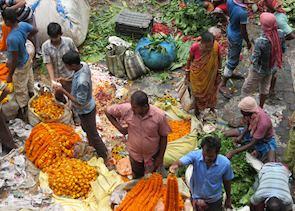 The Flower Market Calcutta