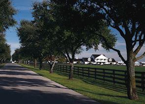 Southfork Ranch, Dallas