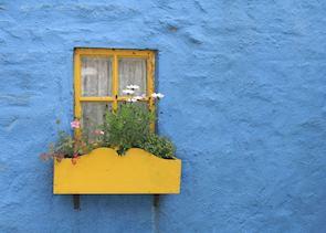 Vibrant house in Ireland