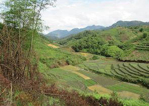 Trekking from Nam Dam Village