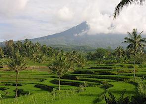 Ijen Plateau, Indonesia