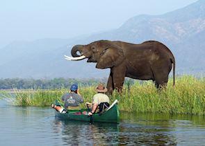 Canoe safari in Mana Pools