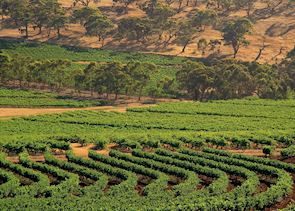 Clare Valley, Australia