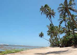 Beach at Praia do Forte, Brazil