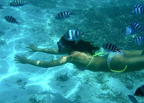 Snorkelling on Mauritius' coral reefs