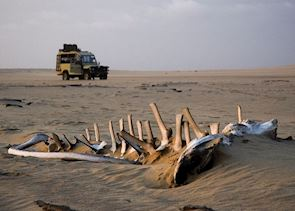 Exploring the Skeleton Coast
