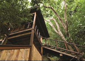 Tree top Chalet, JapaMala