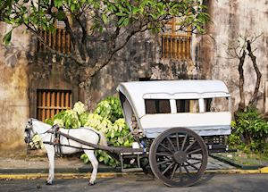 Horse and cart, typical transport in Intramuros, Manila