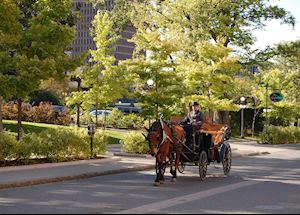 Horsedrawn Carriage Tour, Quebec City