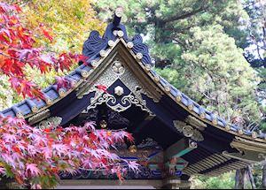 Temple roofs & autumn leaves, Nikko