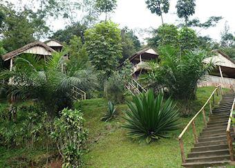 Buhoma Homestead, Bwindi Impenetrable Forest National Park