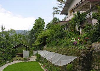 Gardens, Hidden Forest Retreat, Gangtok