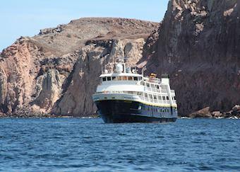 National Geographic Sea Lion/Sea Bird, La Paz