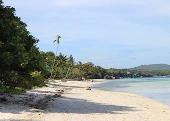 Beach, Amarela, Bohol