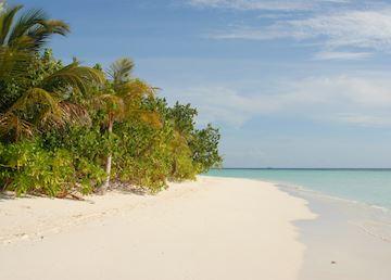 The beach at Dhoni Mighili, Maldive Island