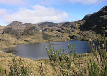 El Cajas National Park, Ecuador