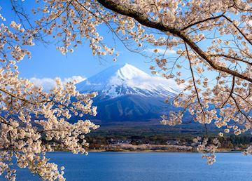 Kawaguchi-ko near Mount Fuji in Japan