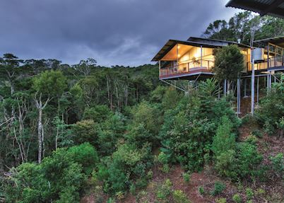 O'Reilly's Rainforest Guesthouse, Lamington National Park