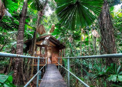 Daintree Wilderness Lodge, Daintree & Cape Tribulation