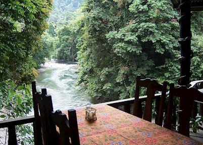 Jungle lodge, Tangkahan
