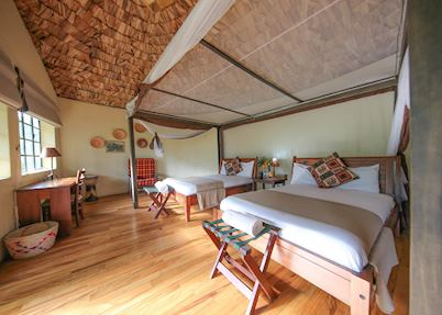 Superior Suite, Mahogany Springs, Bwindi Impenetrable Forest National Park