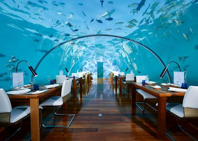 Ithaa Undersea Restaurant, Conrad Rangali Island & Resort, Maldive Island
