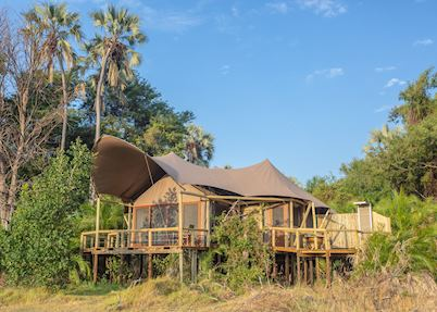 Jacana Camp, Jao Concession