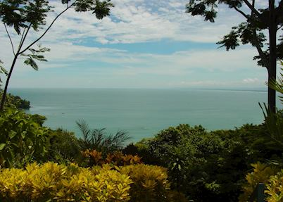 Makanda by the Sea, Manuel Antonio