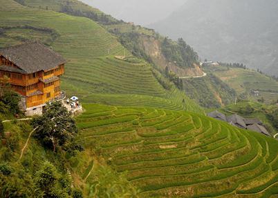 Lian Lodge, Longji