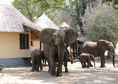 Nsefu Camp, South Luangwa National Park