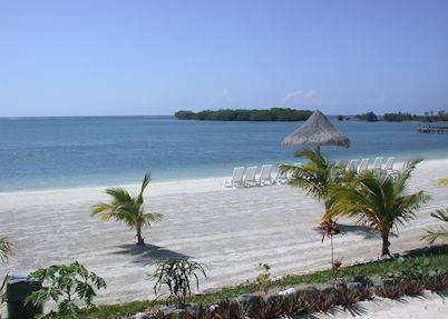 Beach at Turquoise Bay, Roatan