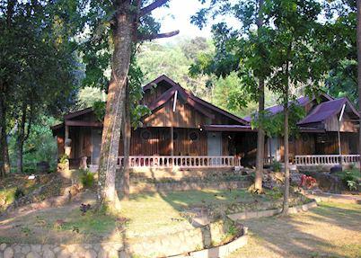 Bukit Lawang Eco Lodge, Bukit Lawang National Park