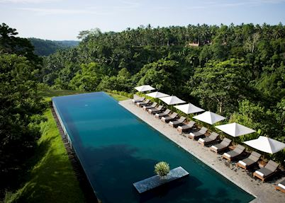 Swimming pool, Alila Ubud, Ubud