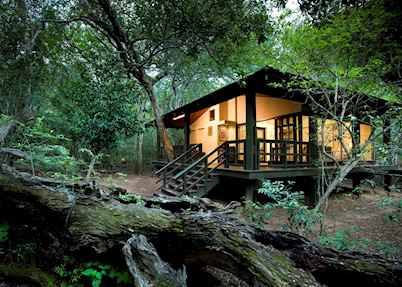 Phinda Forest Lodge, Phinda Private Game Reserve