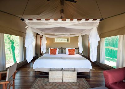 Ongava Tented Camp , Etosha National Park
