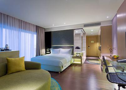 Holiday Inn Aerocity, Delhi