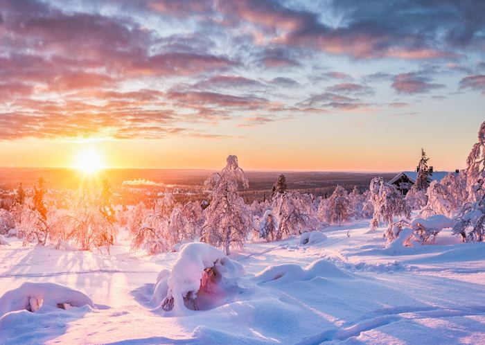 Wintry scenery in Swedish Lapland