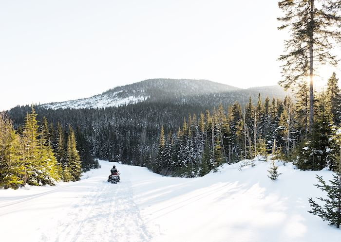 Snowmobiling near Mont Tremblant