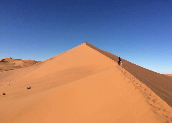 Sand Dune, Sossusvlei