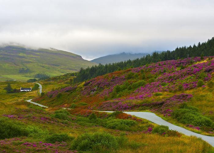 Valley on Isle of Skye