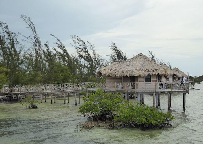 Overwater bungalow, Thatch Caye Resort