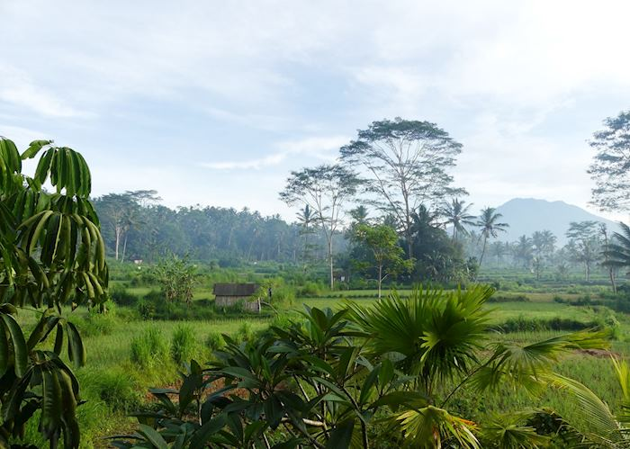 View from Private Terrace in De Klumpu