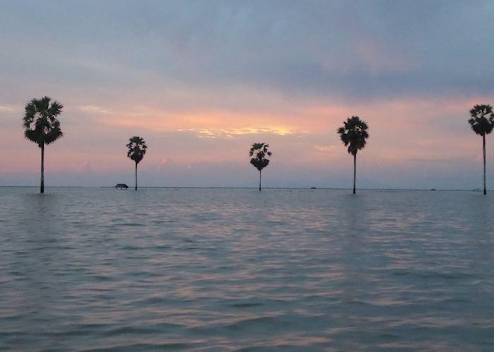 Sunset on Lake Tempe, Sengkang