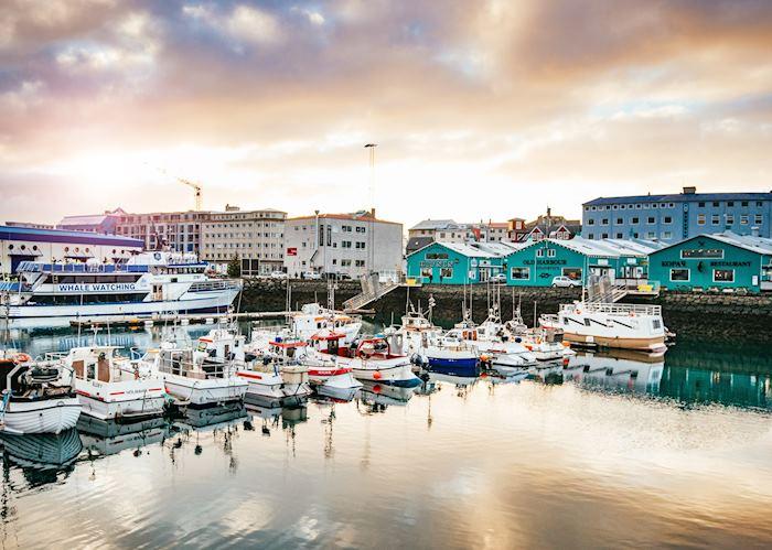 Reykjavík marina