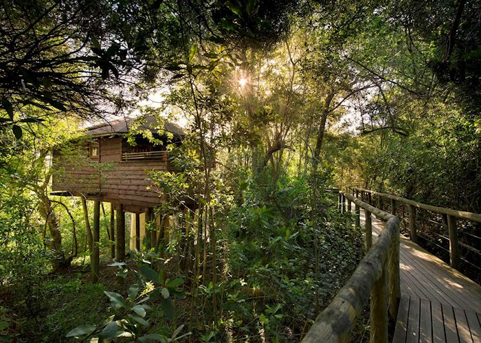Suite Exterior Boardwalk, Tsala Treetop Lodge, Plettenberg Bay