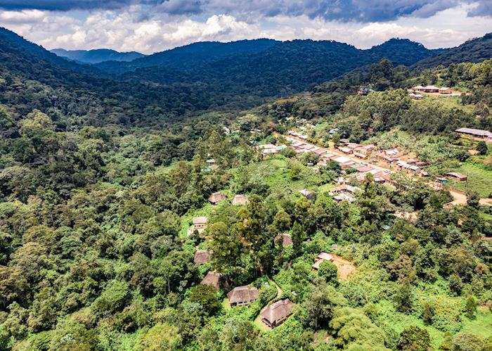 Aerial view of Bwindi Lodge