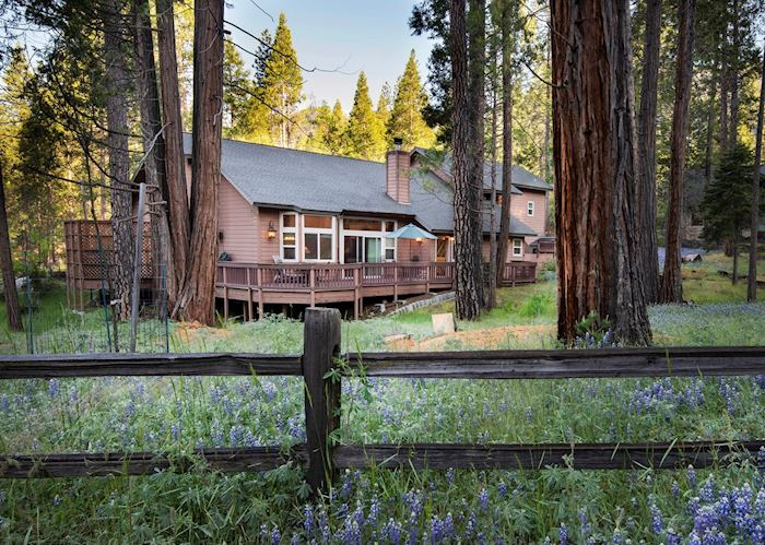 Redwoods in Yosemite 2A -Gold - 4 bedroom