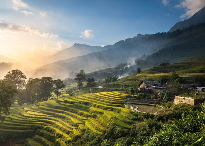 Rice terraces, Munduk