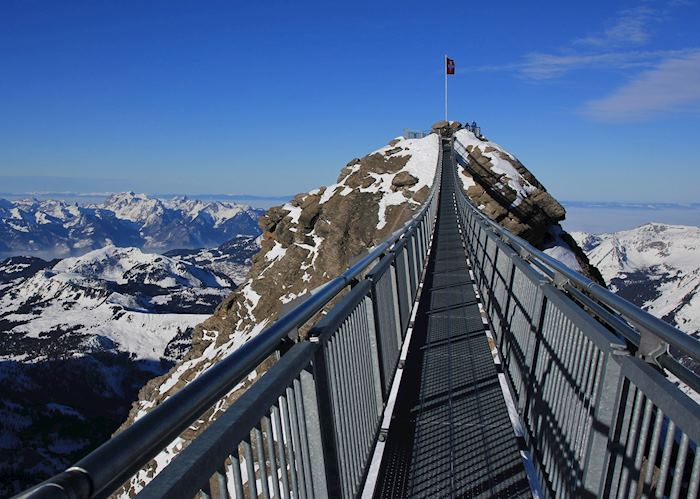 Panoramic views from the Peak walk